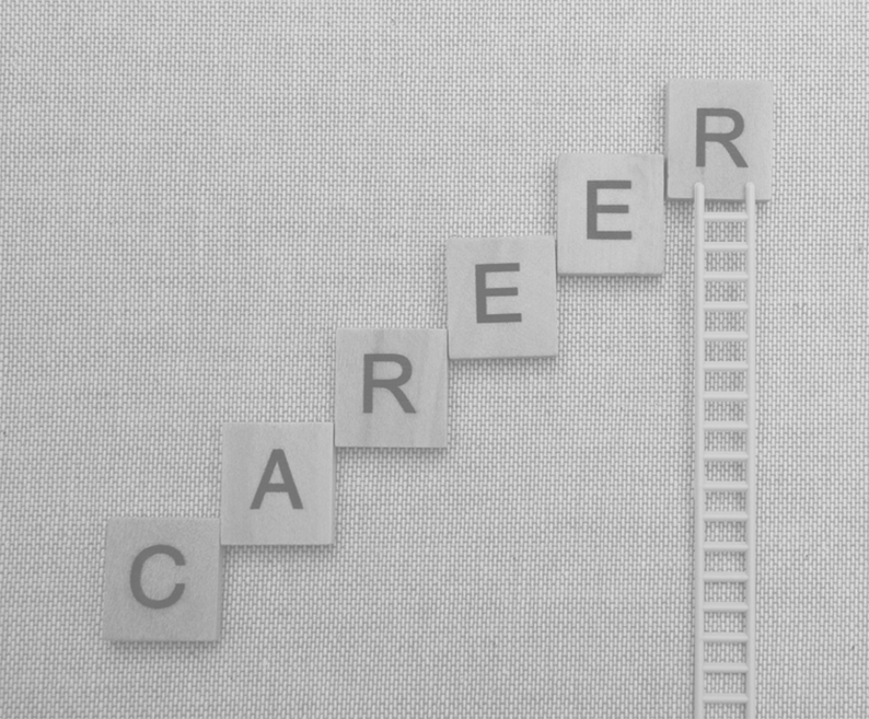 career you love2