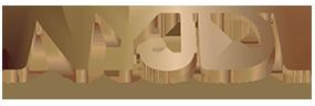 NYJDI Logo